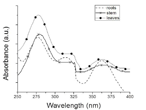 Fig. 2. UV spectra for ellagic acid in roots, stems and leaves of Eichhornia crassipes.